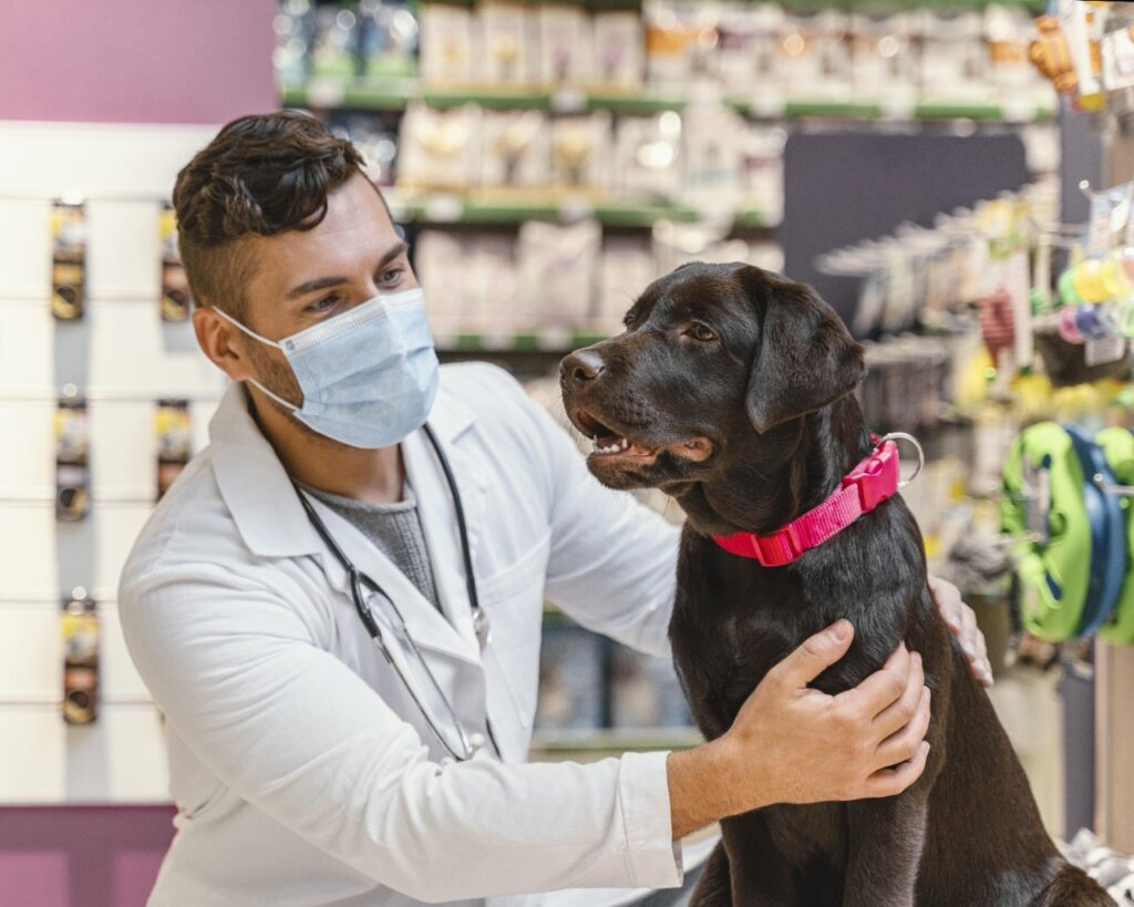 empreender na medicina veterinaria
