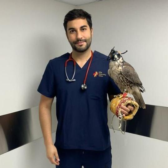 Octávio Lisboa medico veterinario
